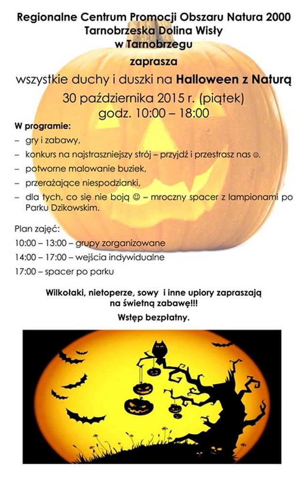 Zaproszenie na Halloween a4