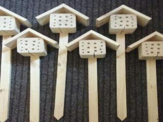 domki-dla-owadow-ferie