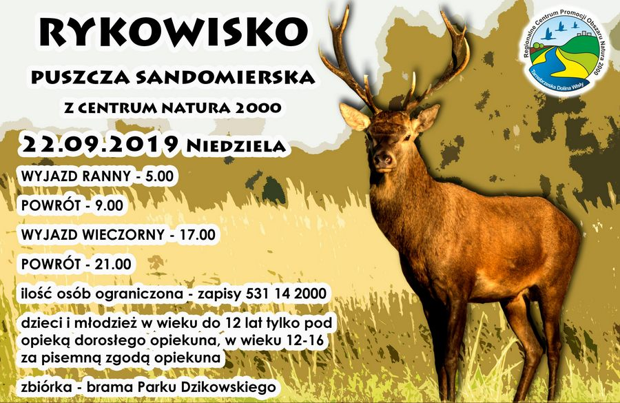rykowisko-2019